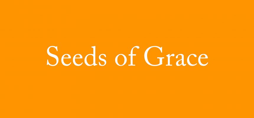 Seeds of Grace April 2017